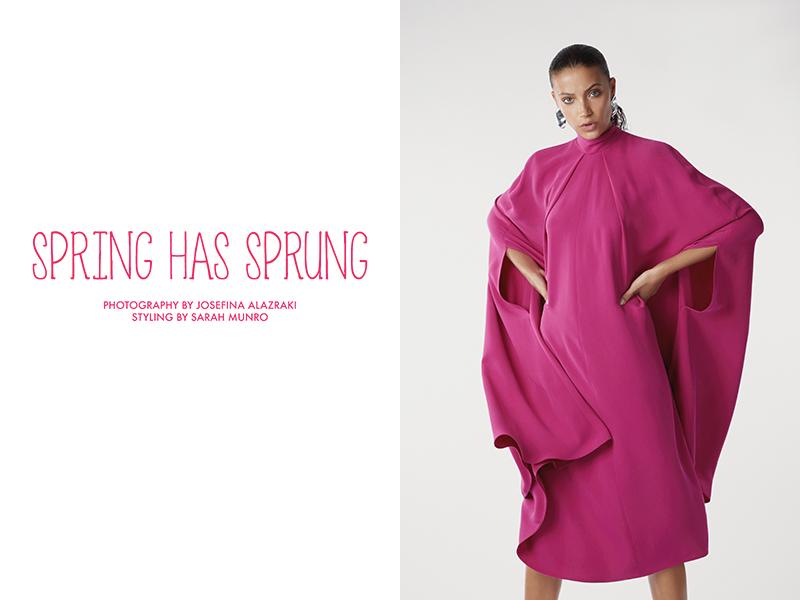 Spring Has Sprung by Josefina Alazraki