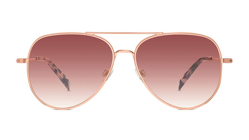 Warby Parker Raider Large Sunglasses in Rose Gold $145