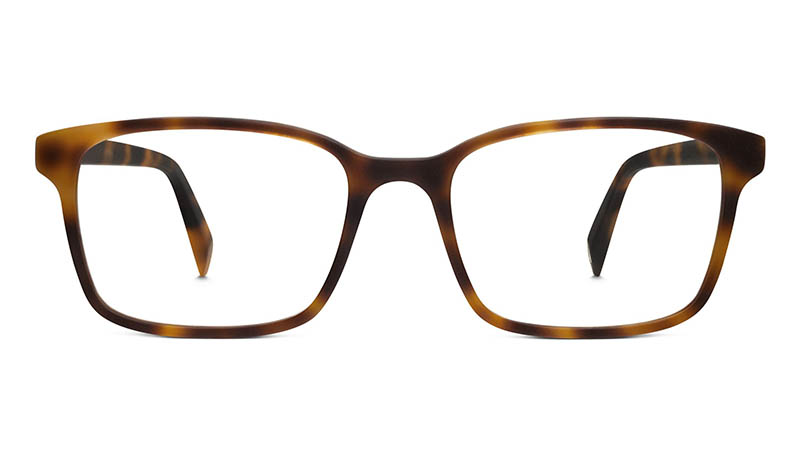 Warby Parker Brady Glasses in Layered Tortoise Matte $95
