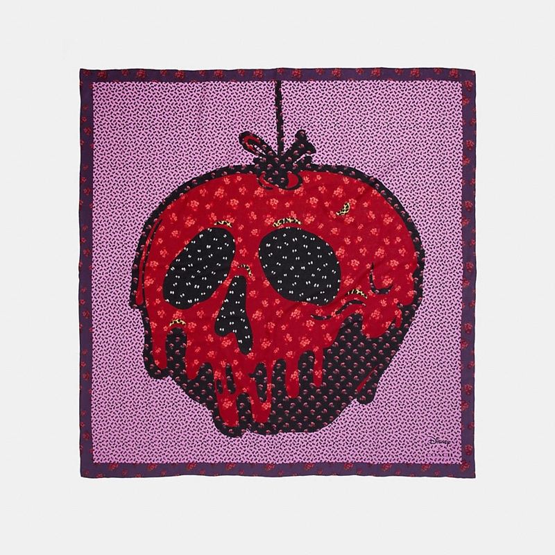Disney x Coach Poison Apple Patchwork Scarf $250