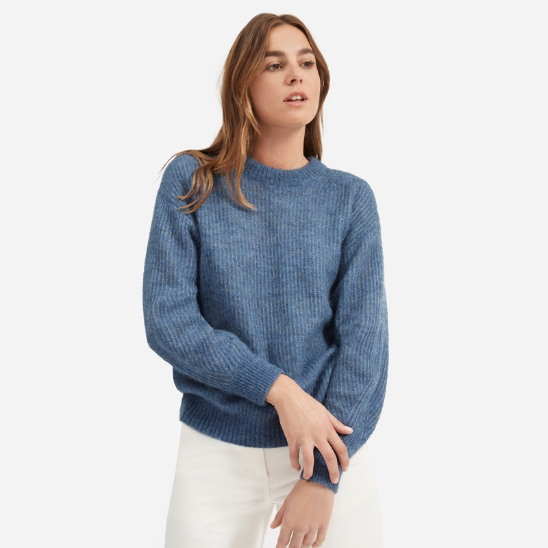 Everlane Oversized Alpaca Crew Sweater in Heather Blue $95