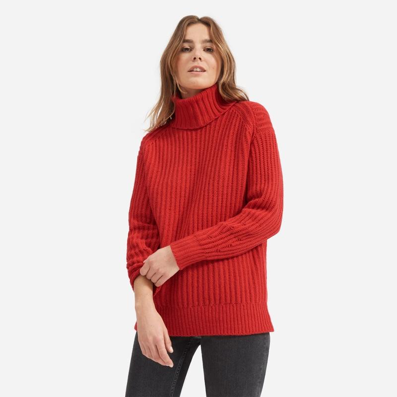 Everlane Soft Wool Rib Turtleneck Sweater in Red $155