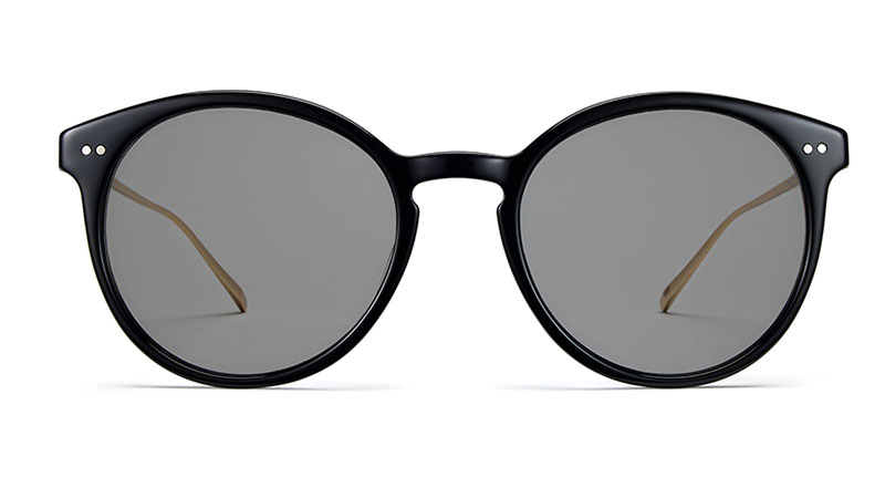 Warby Parker Langley Sunglasses in Jet Black with Gold $145