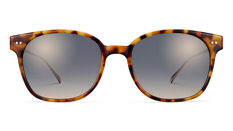Warby Parker Tilden Sunglasses in Acorn Tortoise with Gold $145