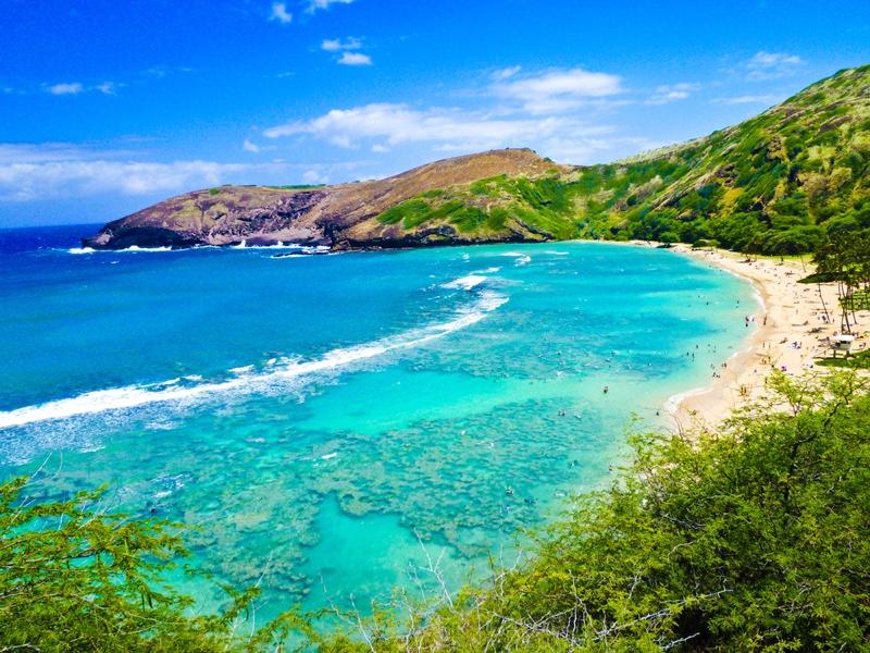 Oahu Hawaii Image Beach Landscape