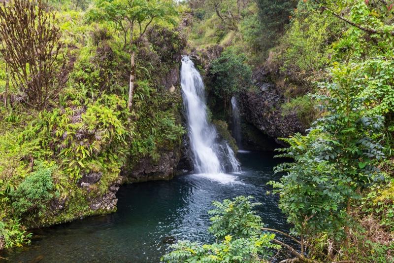 Tropical Waterfall Hawaii Grassland