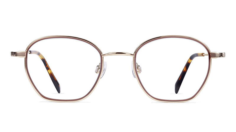 Warby Parker Larsen Glasses in Sienna Pink with Polished Gold $145