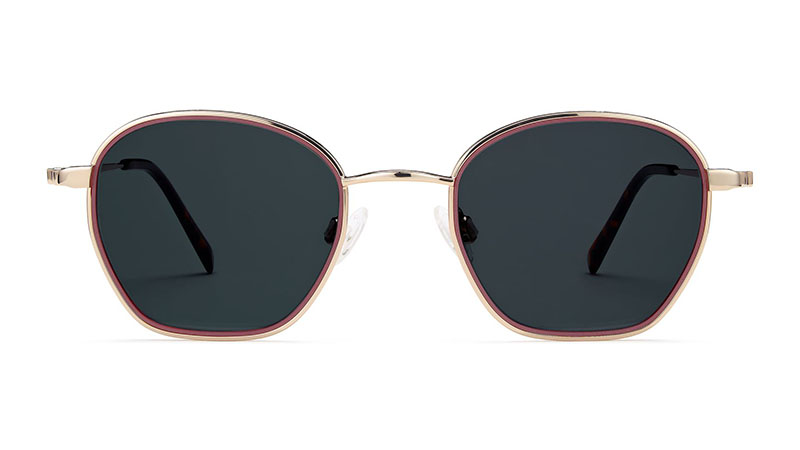 Warby Parker Larsen Sunglasses in Rhubarb Matte with Polished Gold $145