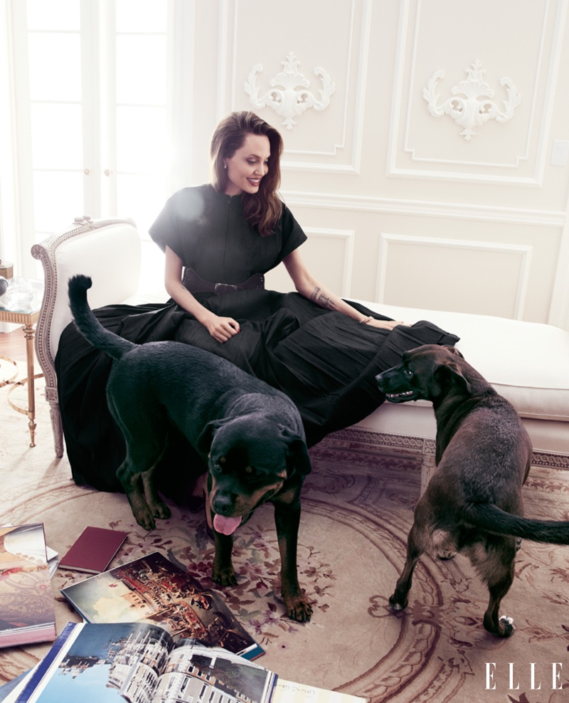 Posing with dogs, Angelina Jolie wears Dior dress and belt
