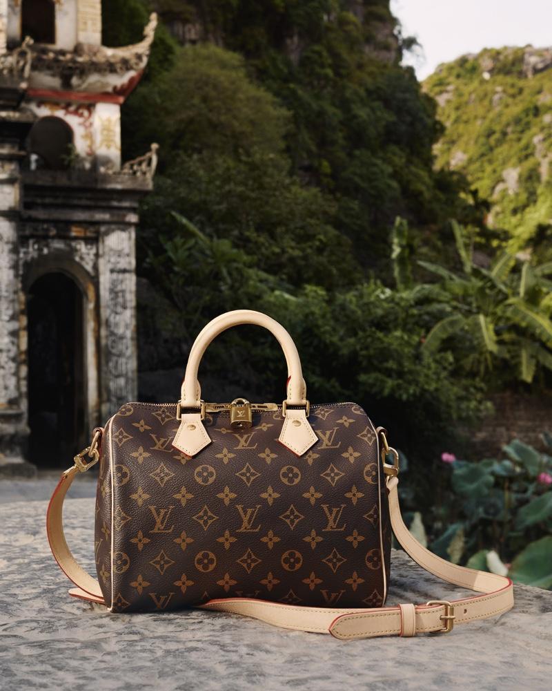 Louis Vuitton Speedy Bandoulière 25 bag