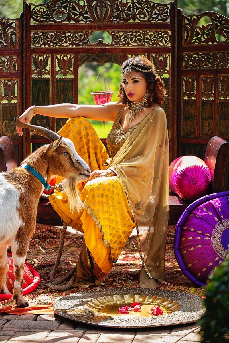 Pakistan Woman Outfit Fashion Costume Goat