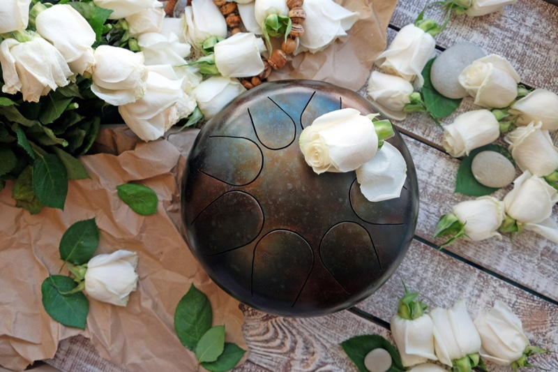 Handpan Lifestyle Instrument Rose Flowers