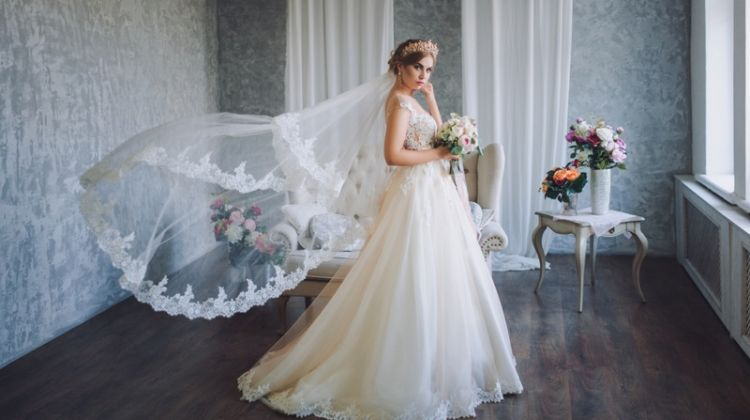 Model Wedding Dress Fashion Long Veil Tiara