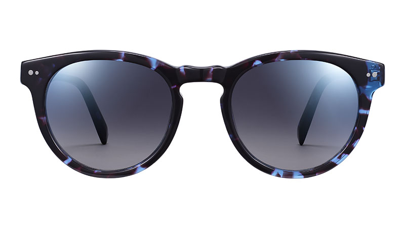 Warby Parker Hayes Sunglasses in Riverbed Tortoise $95