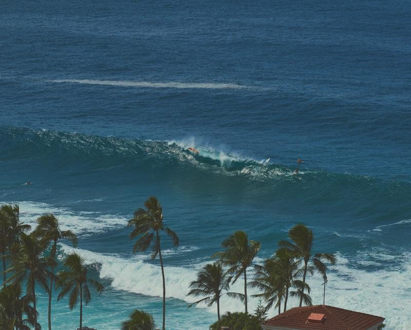 Binx Walton Soaks Up the Sun in Hawaii for WSJ. Magazine