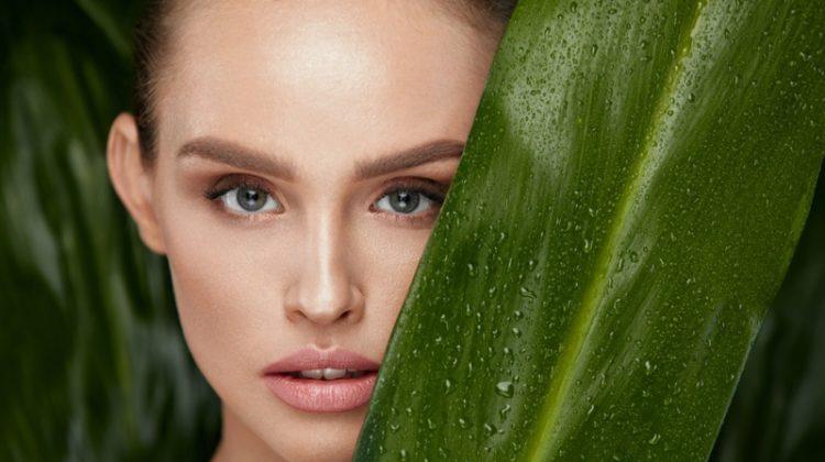 Closeup Model Green Leaf Beauty Natural