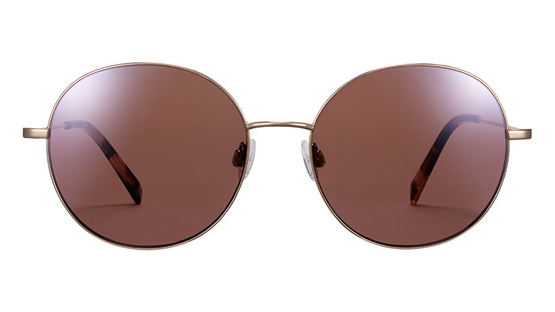 Warby Parker Nellie Sunglasses in Polished Gold $145