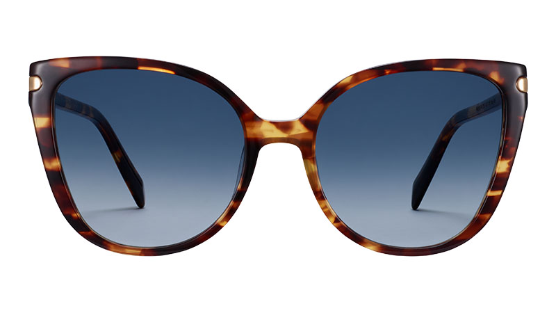 Warby Parker Phoebe Sunglasses in Root Beer with Polished Gold $145