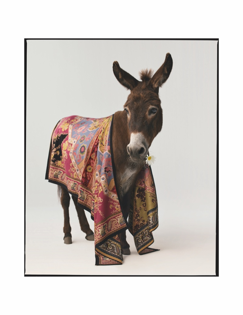 A donkey appears in Etro fall-winter 2020 campaign.