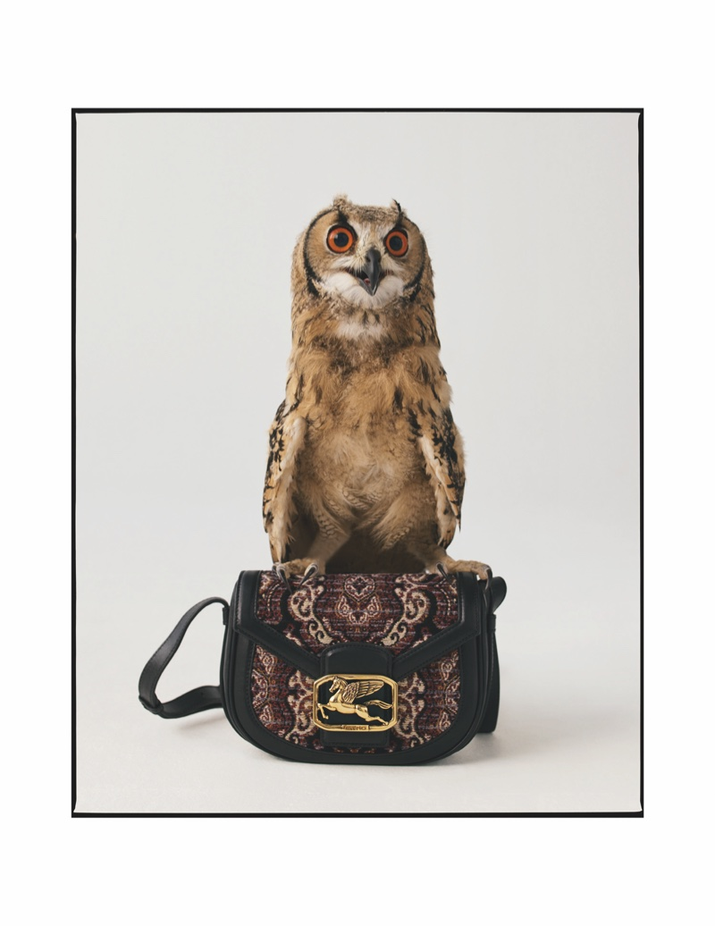 Owl appears in Etro fall-winter 2020 campaign.