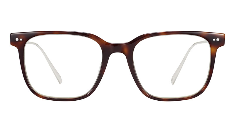Warby Parker Caleb Glasses in Woodgrain Tortoise with Polished Silver $145
