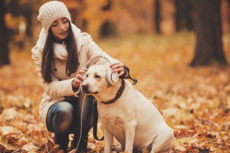 Dog Woman Park Autumn Leaves Headphones