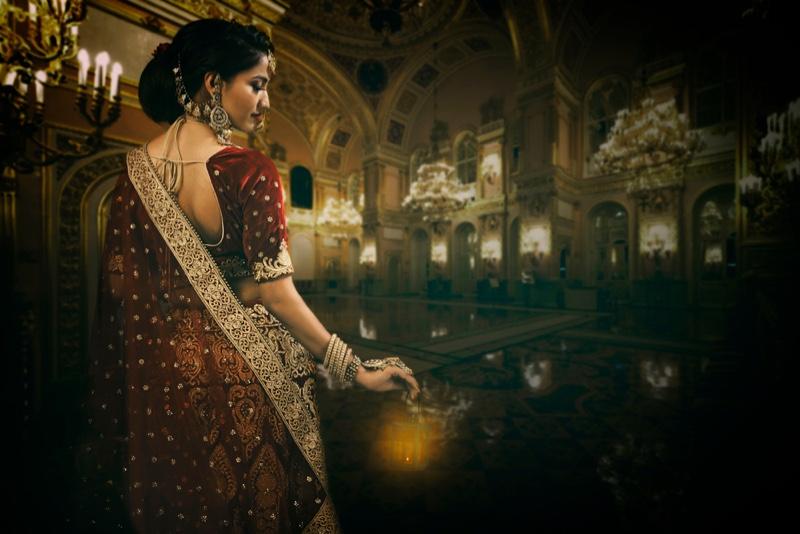 Indian Woman Sari Embellishment Fashion