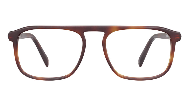 Warby Parker Lyon Glasses in Rye Tortoise Matte $95