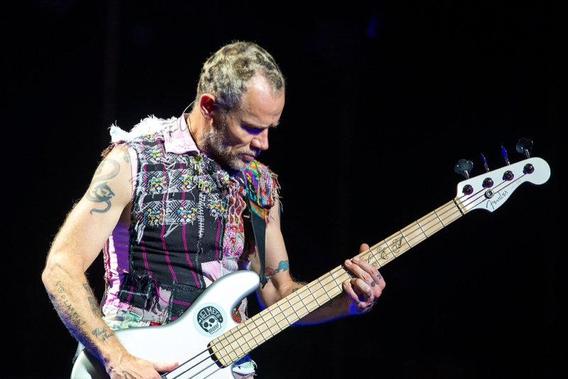 Flea Bassist Red Hot Chili Peppers