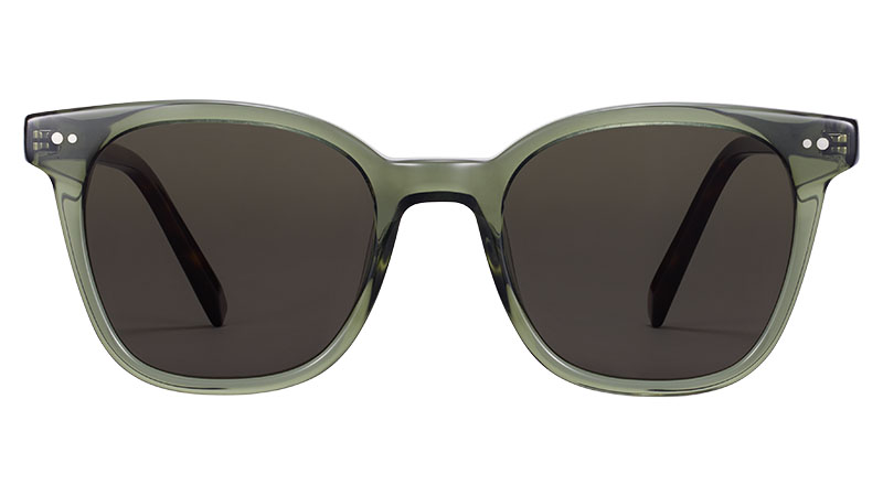 Warby Parker Griffin Sunglasses in Seaweed Crystal with Cognac Tortoise $95