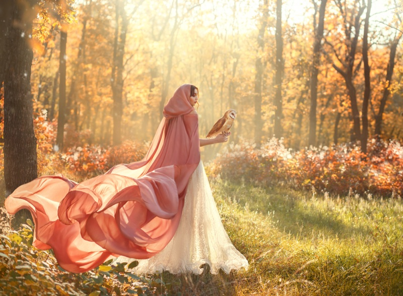 Woman Forest Pink Cloak Field Holding Owl Fantasy