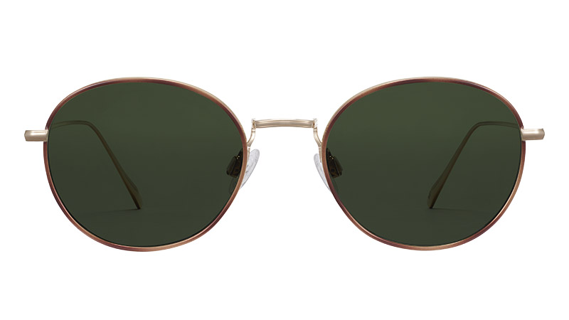 Warby Parker Colvin Sunglasses in Polished Gold with Savanna Tortoise $195