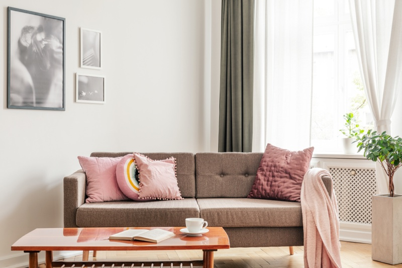 Home Decor Pictures Pink Pillows Living Room