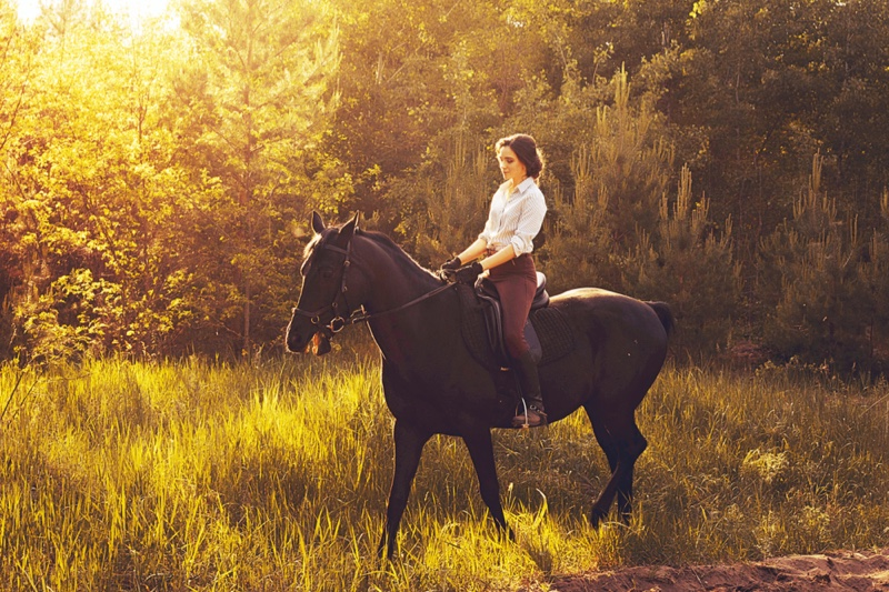 Stylish Woman Equestrian Style Horse Ride