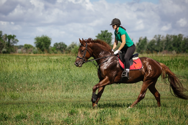 Woman Riding Brow Horse Equestrian Green Top