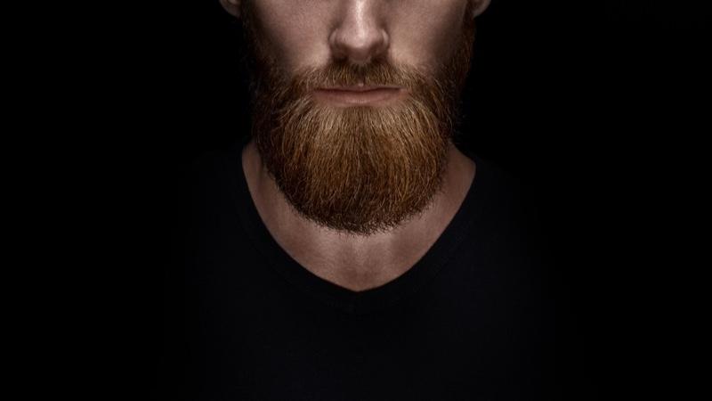Closeup Groomed Male Model Beard