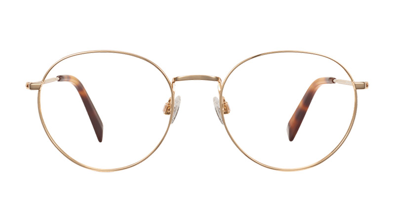 Warby Parker Simon Glasses in Polished Gold $145