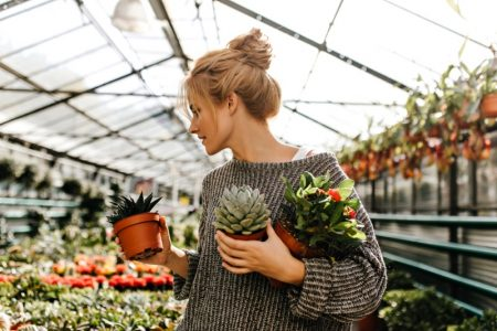 Woman Sweater Carrying Succulent Plants