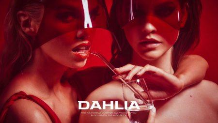 Barbara, Stella & Gizele Are Red-Hot in Dahlia Campaign