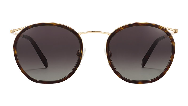 Warby Parker Carmen Sunglasses in Cognac Tortoise with Polished Gold $145