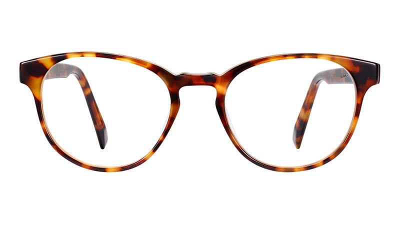 Warby Parker Whalen Glasses in Acorn Tortoise $95